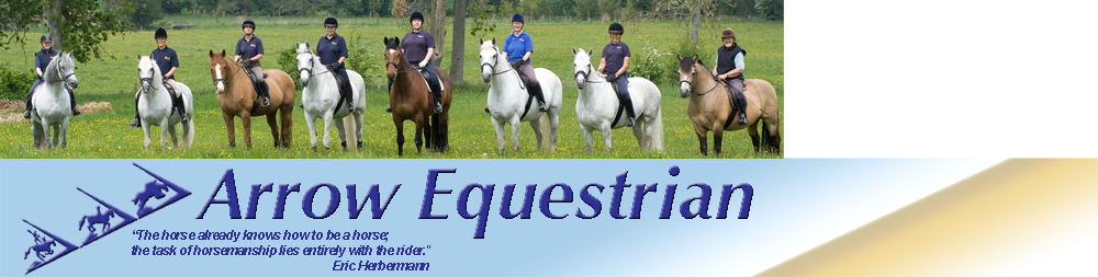 Arrow Equestrian